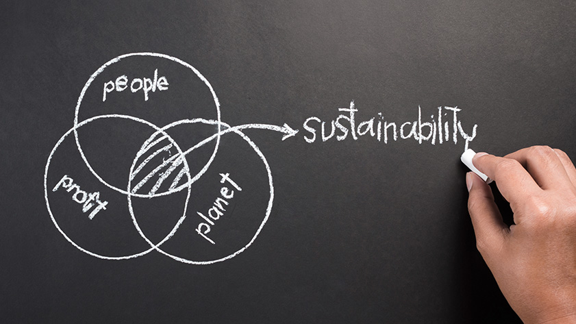 Strategic alliance in sustainability